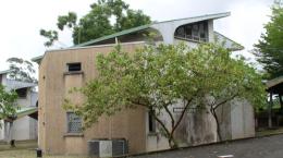 University of Buea campus