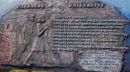 makerere institutes